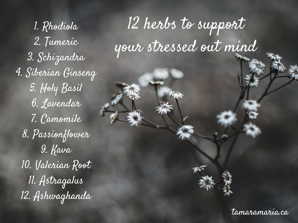 12-stress-helping-herbs